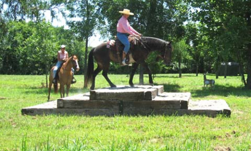 Mustang Trail Obstacles Kelli Paulson Clinic Horse Trainer